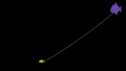 Screenshot: Two differently colored and differently sized fish connected by a white line. Black background.
